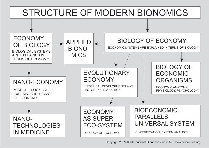Биономика фото